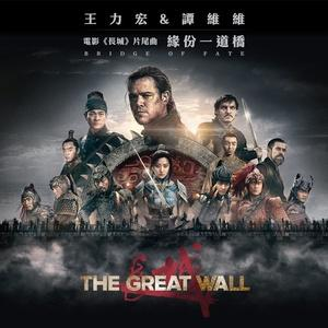 《缘分一道桥》 - 王力宏/谭维维